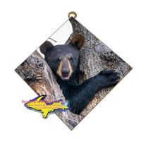 Wildlife Photography Bear Cub Hanging Art Tile Unique and affordable Michigan Made gifts