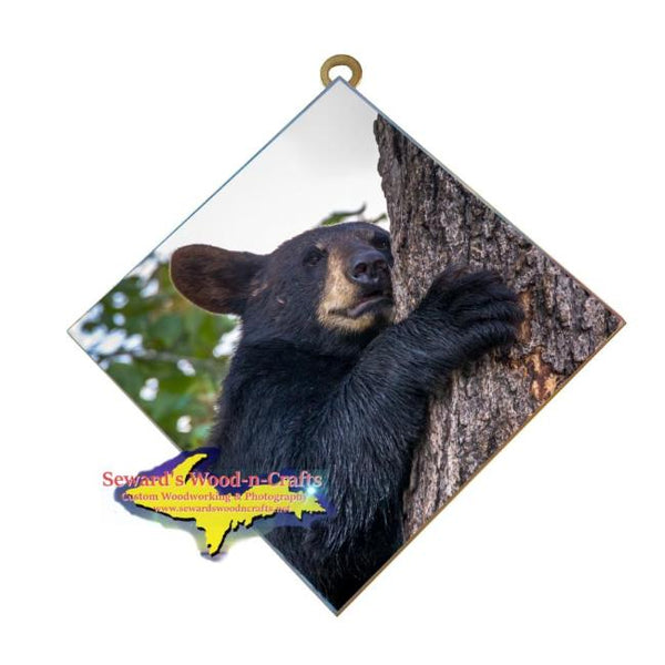 Wildlife Photography Bear Cub Hanging Art Tile Affordable Michigan Made gifts