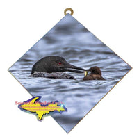 Michigan Wall Art Wildlife Photography Loon Feeding Her Baby Hanging Art