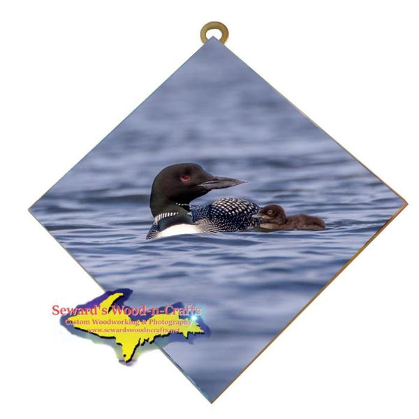 Michigan Wall Art Wildlife Photography Loon and Her Baby Hanging Art