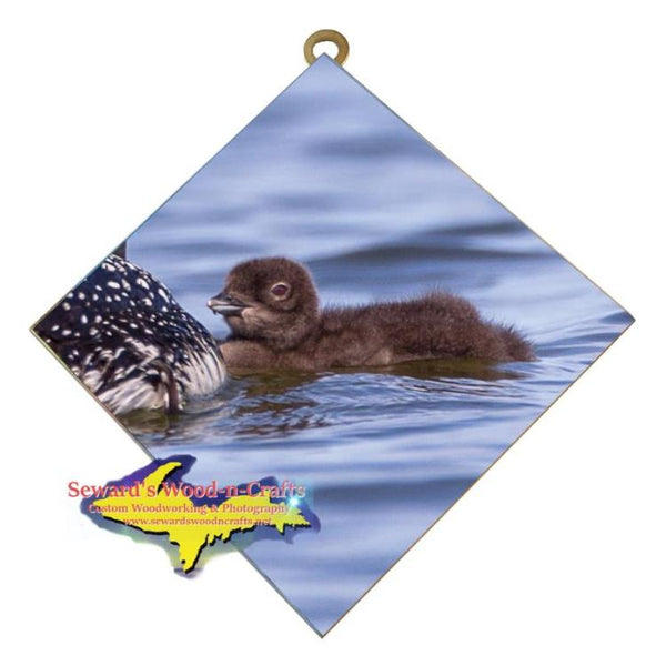 Michigan Wall Art Wildlife Photography Baby Loon Hanging Art