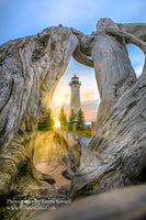Michigan Landscape Photography Looking through driftwood at Crisp Point Lighthouse with a Lake Superior Sunset