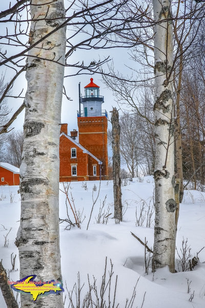 Michigan Landscape Photography Big Bay Point Lighthouse Winter Birch Trees Photo
