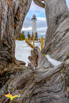Michigan Landscape Photography Crisp Point Lighthouse Driftwood Winter Photo