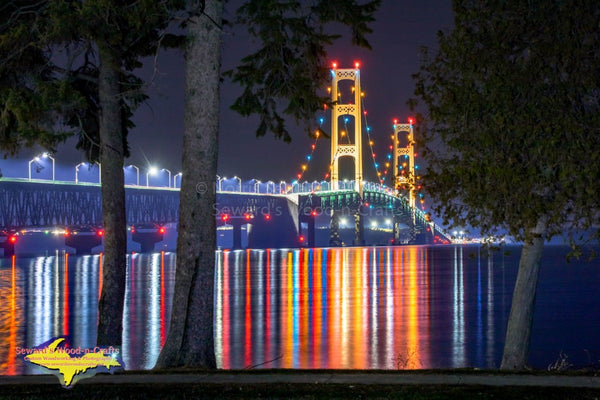 Mackinac Bridge Reflections -8617