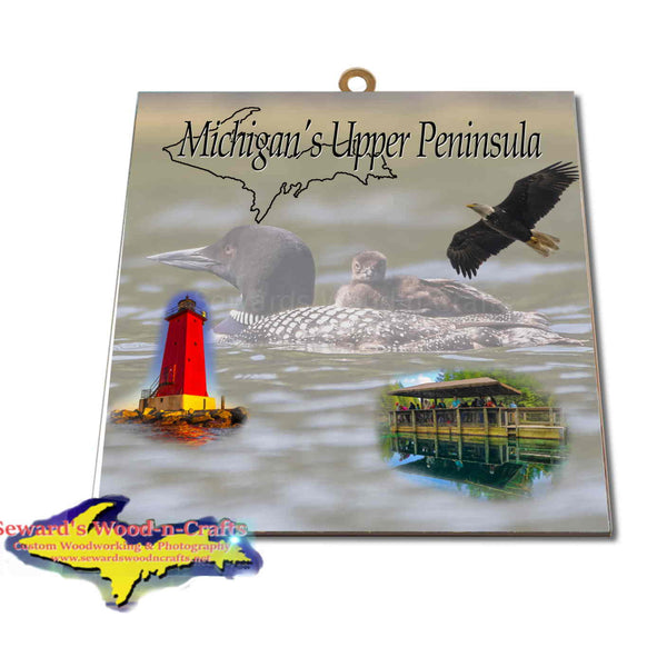 Michigan Made Artwork Michigan's Upper Peninsula Loon & Baby Loon Hanging Photo