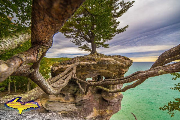 Michigan's Upper Peninsula Photos Pictured Rocks Chapel Rock Roots Image For Sale Great Prices