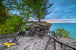 Michigan Photography Pictured Rocks Chapel Rock Roots -6121
