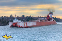 Great Lakes Freighter Photography  Great Lakes Trader/Joyce L Van Enkevort heading up the St.May's River