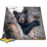 Wildlife Bear Cub-1260 ~ Puzzle Coasters & Gifts