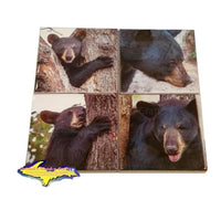 Michigan Coasters Black Bears On Michigan Coasters Best unique gifts or collectibles for family or friends