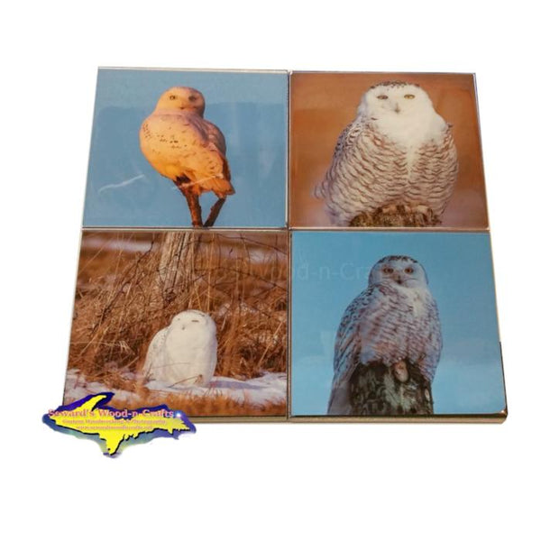 Michigan Wildlife Coaster Sets Snowy Owl Best Drink Coaster For Sale