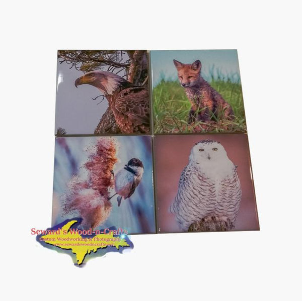 Best Michigan Wildlife Coaster Set Mixed Wildlife Images On Drink Coasters
