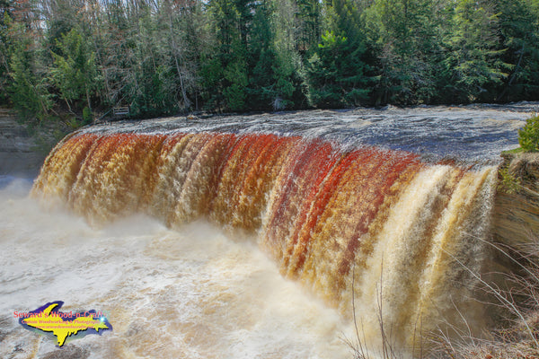Upper Tahquamenon Waterfalls Spring Run -2985
