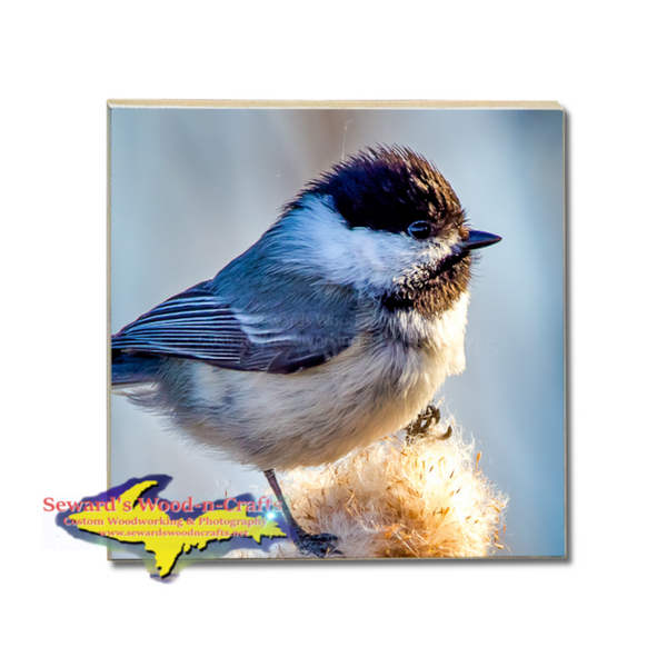 Michigan Made Wildlife Drink Coaster Chickadee Yooper Gifts