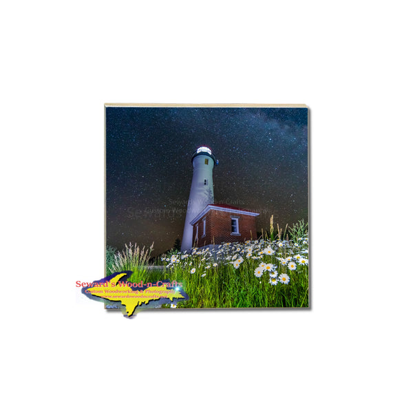 Field of daisies milky way skies at Crisp Point Lighthouse Michigan coaster