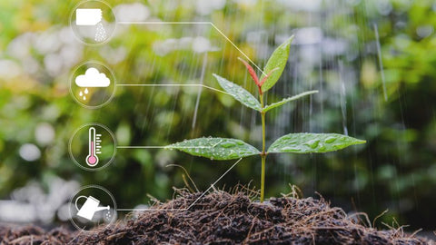 Small helpers, big impact: digitization makes soil renovation easier on gas works