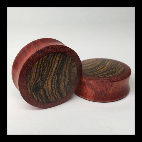 Ebony Holly Solid Round Plugs