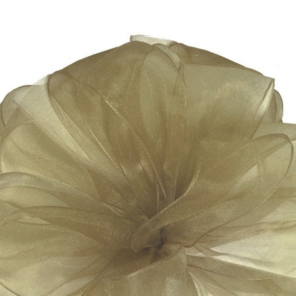Simply Sheer Ribbon - Champagne - 2 Sizes