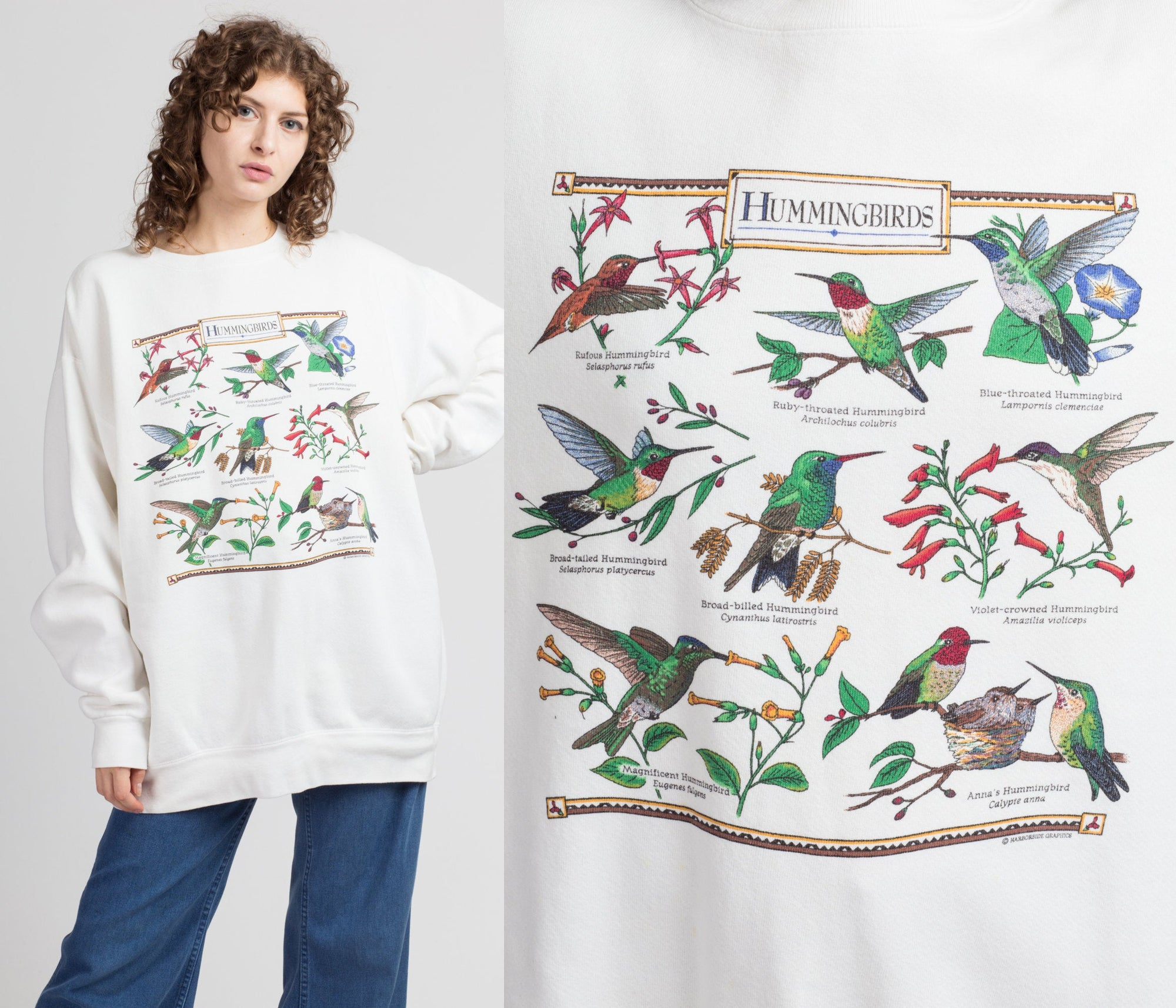 90s Hummingbird Species Graphic Sweatshirt - Men's Large