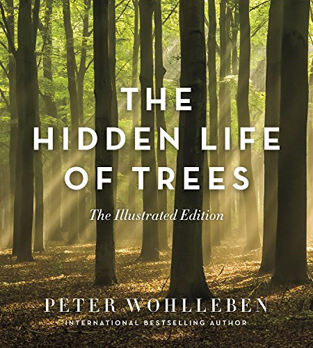 Behemotor The Hidden Life of Trees: The Illustrated Edition