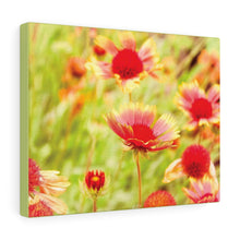 Flower Power Canvas Gallery Print