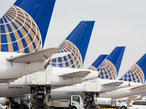 United back in doghouse after mistakenly shipping German Shepherd to Japan
