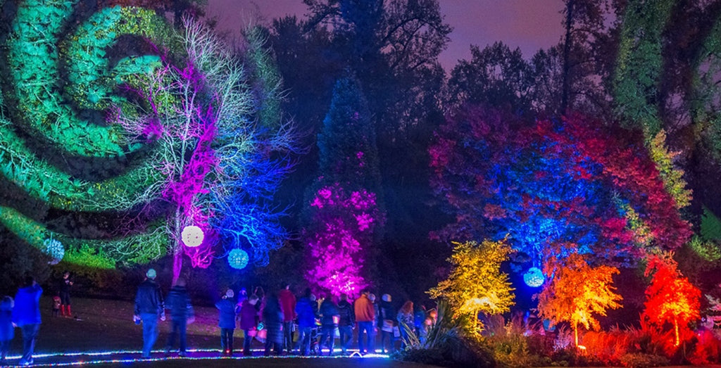 10 outdoor events to check out in Vancouver in February