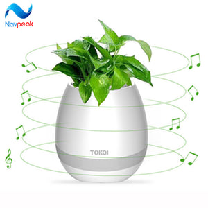 Smart Bluetooth Music Speaker With Light Touch Plant Can Sing Night Colorful light for Best Gift 1 pc