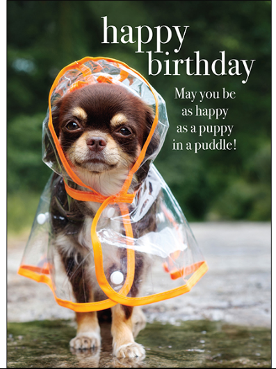 Affirmations Happy Birthday Card - Puppy in a Puddle