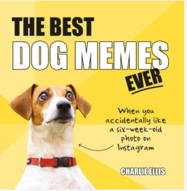 NBD The Best Dog Memes Ever