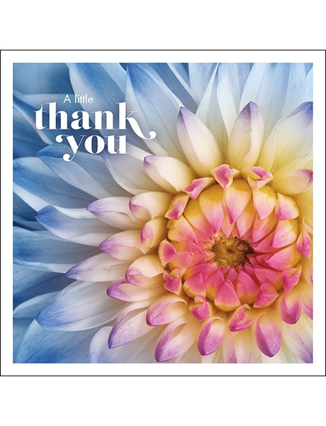 Affirmations A Little Thank You Card