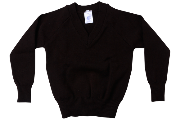 Longsleeve Jersey - Brown