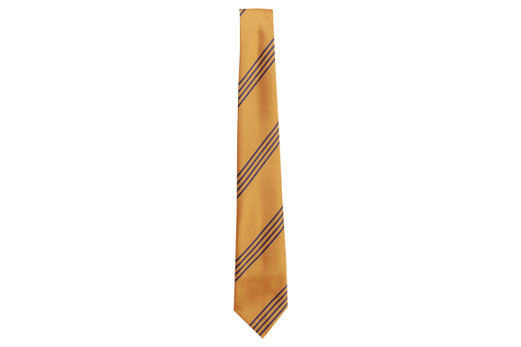 Striped Tie - Parkvale