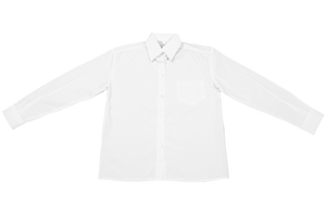 Longsleeve Raised Collar Blouse - White
