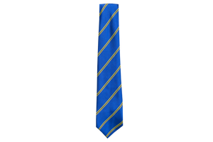 Striped Tie - Wentworth