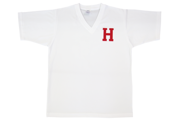 Golf Shirt Moisture Management Emb - Hamptons High Sports
