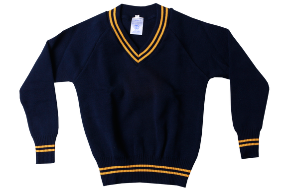 Longsleeve Striped Jersey - Isikhum Navy/Gold
