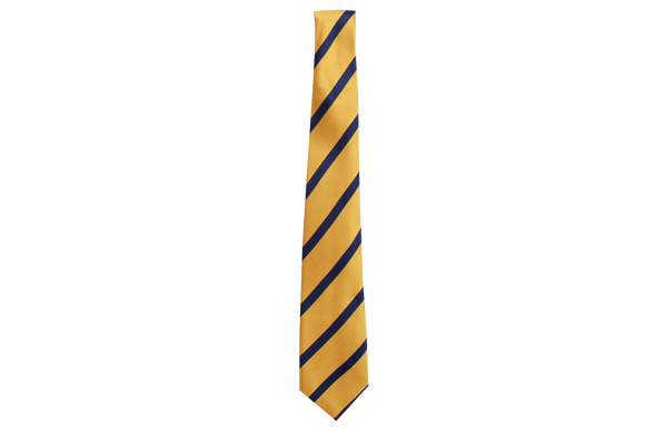 Striped Tie - Sastri