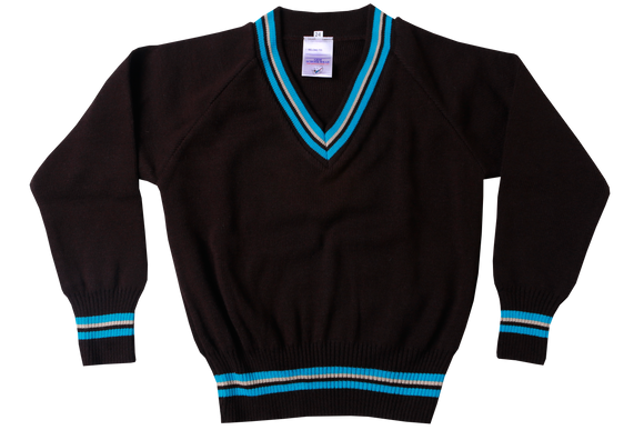 Longsleeve Striped Jersey - Avon Junior