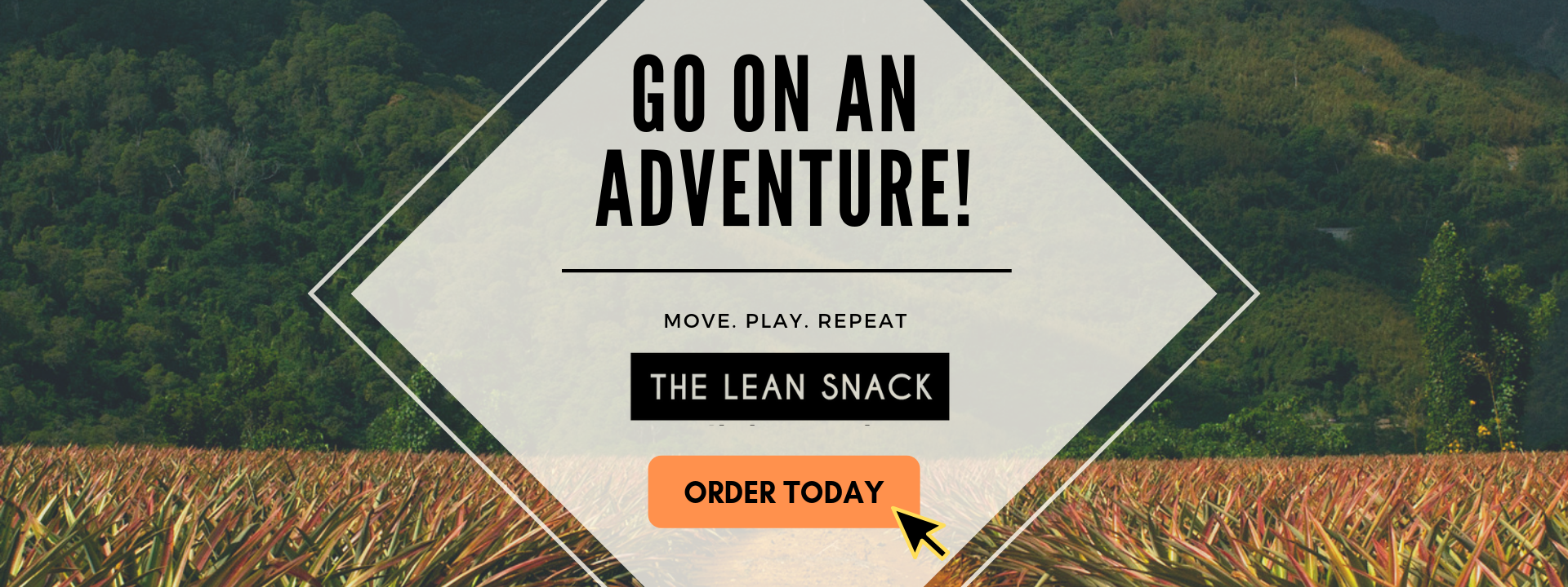 The Lean Snack Travel is healthy