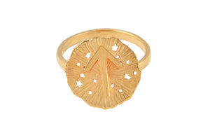 Ring with a small runic pendant Tiwaz. Gold plated.