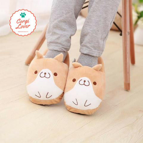 Corgi Slippers