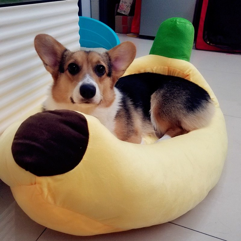 Corgi bed banana shape washable