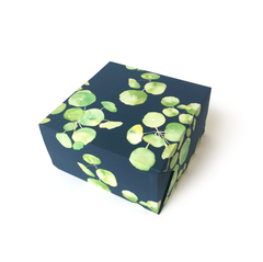 Pancake Plants Navy Gift Wrap