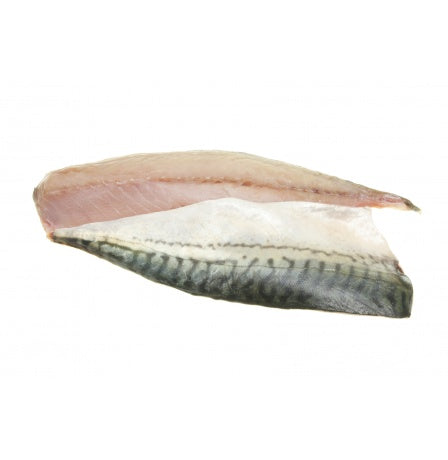 MACKEREL - 2 FILLETS