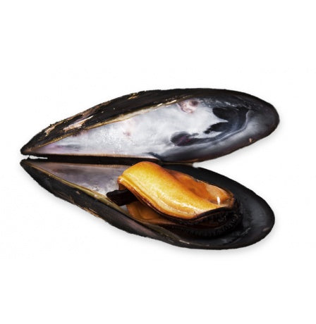MUSSELS - 1KG