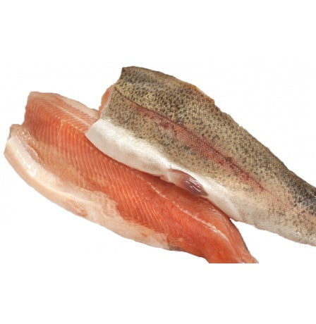 RAINBOW TROUT - 2 FILLETS