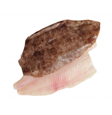 LEMON SOLE - 2 FILLETS