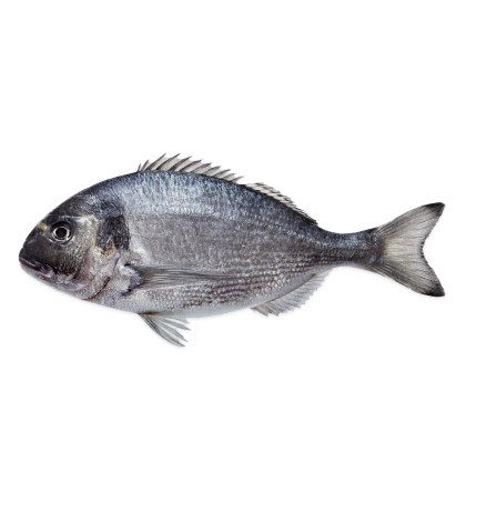 SEA BREAM - WHOLE FISH